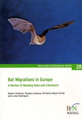 Bat Migrations in Europe
