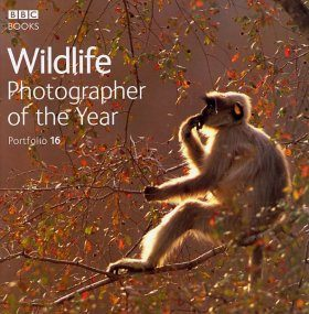 Wildlife Photographer of the Year, Portfolio 16