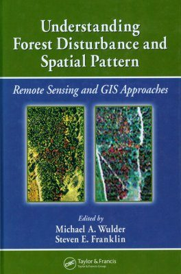 Understanding Forest Disturbance and Spatial Pattern