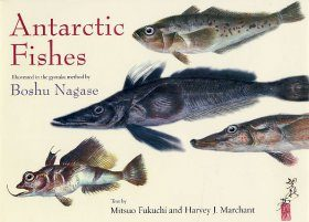 Antarctic Fishes