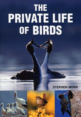 The Private Life of Birds
