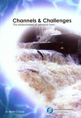Channels and Challenges