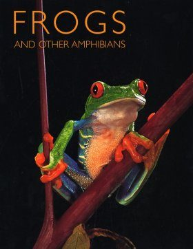 Frogs and Other Amphibians