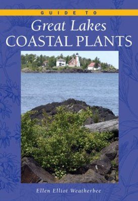 Guide to Great Lakes Coastal Plants