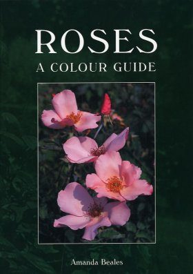 Roses: A Colour Guide