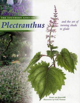 The Southern African Plectranthus