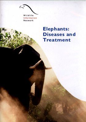 Elephants: Diseases & Treatment