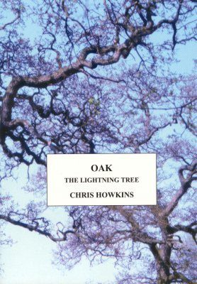 Oak: The Lightning Tree