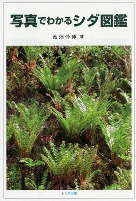 Picture Indents of Ferns [Japanese]