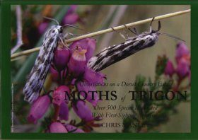 Moths of Trigon