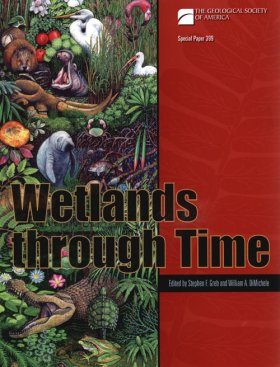 Wetlands Through Time