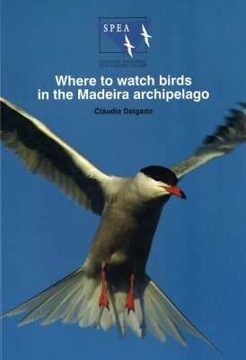Where to Watch Birds in the Madeira Archipelago
