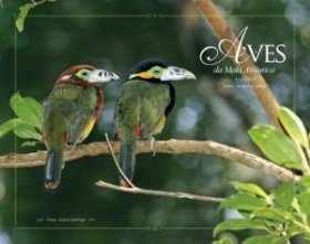 Birds of the Atlantic Forest / Aves da Mata Atlântica