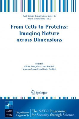 From Cells to Protein: Imaging Nature Across Dimensions