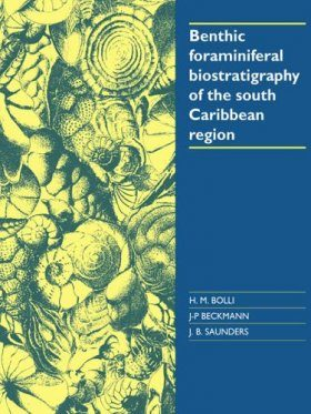 Benthic Foraminiferal Biostratigraphy of the Southern Caribbean