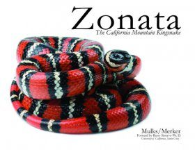 Zonata: The California Mountain Kingsnake