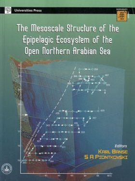 The Mesoscale Structure of the Epipelagic Ecosystem of the Open Northern Arabian Sea