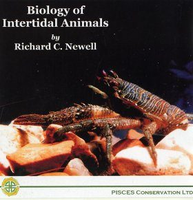 Biology of Intertidal Animals