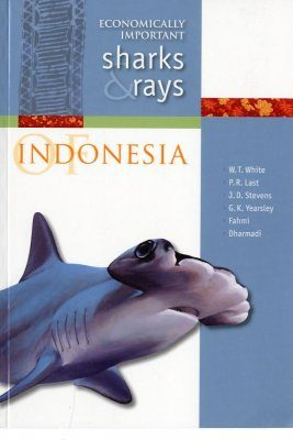 Economically Important Sharks and Rays of Indonesia