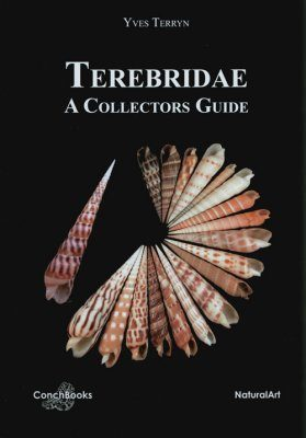 A Collectors Guide to Recent Terebridae