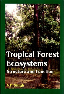 Tropical Forest Ecosystems