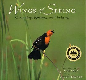 Wings of Spring