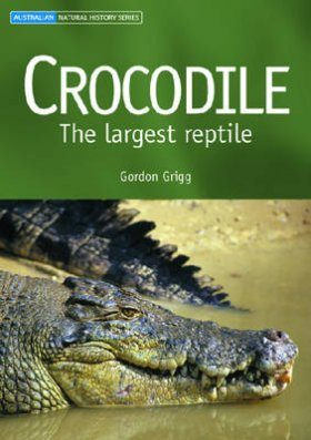 Crocodile: The Largest Reptile