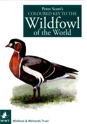 Peter Scott's Coloured Key to the Wildfowl of the World