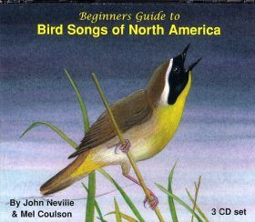 Beginners Guide to Bird Songs of North America (3CD)