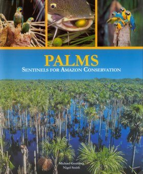 Palms: Sentinels for Amazon Conservation