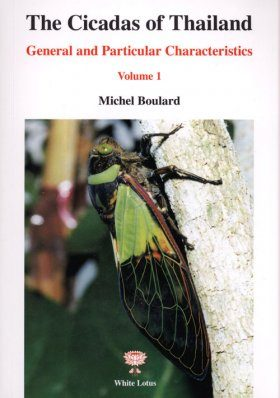 The Cicadas of Thailand, Volume 1