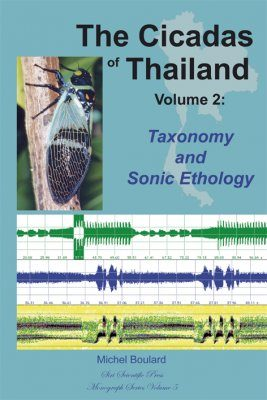 The Cicadas of Thailand, Volume 2