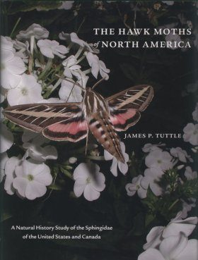 The Hawk Moths of North America