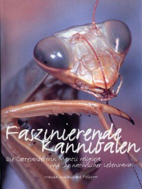Faszinierende Kannibalen: Die Gottesanbeterin Mantis religiosa und ihr Natürlicher Lebensraum [Fascinating Cannibals: The Praying Mantis Mantis religiosa and its Natural Habitat]