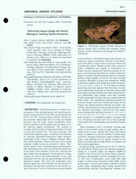 Catalogue of American Amphibians and Reptiles: Numbers 801-820