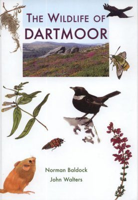 The Wildlife of Dartmoor