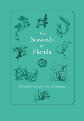 The Seaweeds of Florida