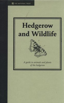 Hedgerow and Wildlife