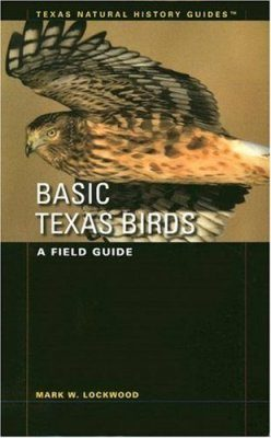 Basic Texas Birds