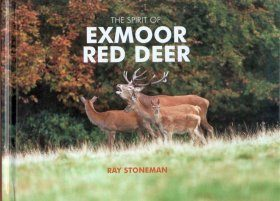 The Spirit of Exmoor Red Deer