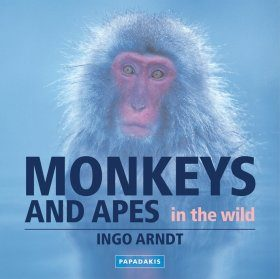 Monkeys and Apes in the Wild