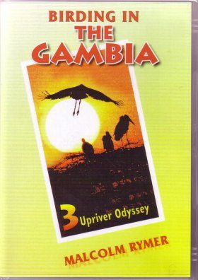 Birding in the Gambia, Volume 3 (All Regions)