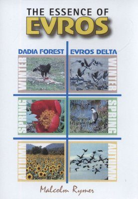 The Essence of Evros - DVD (All Regions)