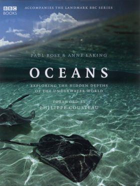 Oceans: Exploring the Hidden Depths of the Underwater World