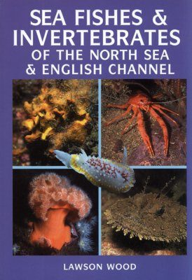 Sea Fishes and Invertebrates of the North Sea & English Channel