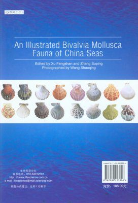 An Illustrated Bivalvia Mollusca Fauna of China Seas [Chinese]
