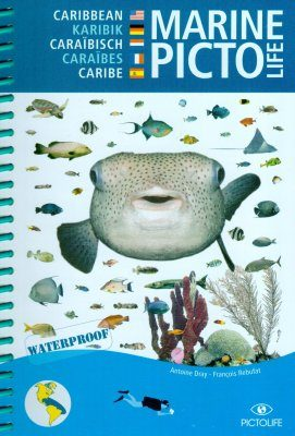 Marine Pictolife Western Tropical Atlantic [multilingual]