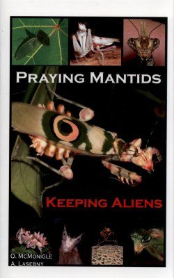 Praying Mantids: Keeping Aliens