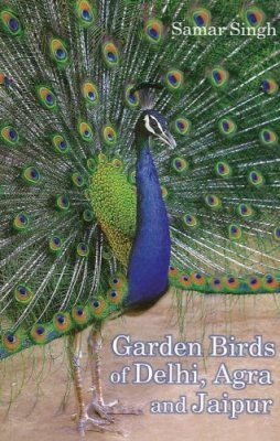 Garden Birds of Delhi, Agra and Jaipur