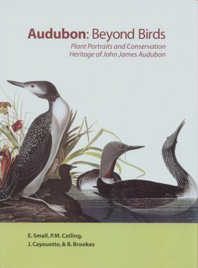 Audubon: Beyond Birds